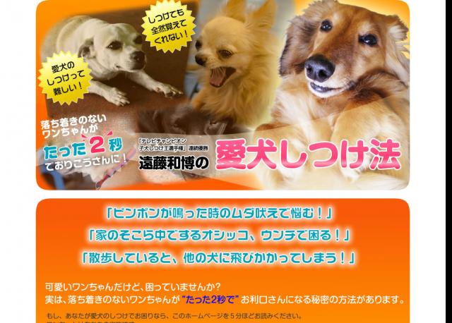 テレビチャンピオン子犬しつけ王優勝!遠藤和博の愛犬しつけ法