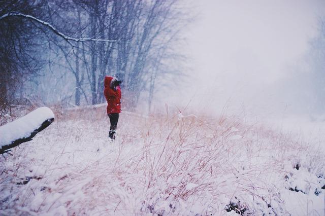 winter-692346_640